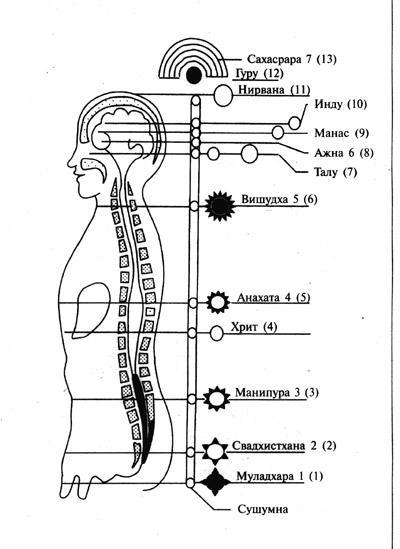Чакры на теле человека